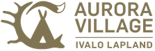 Aurora Village logo with text