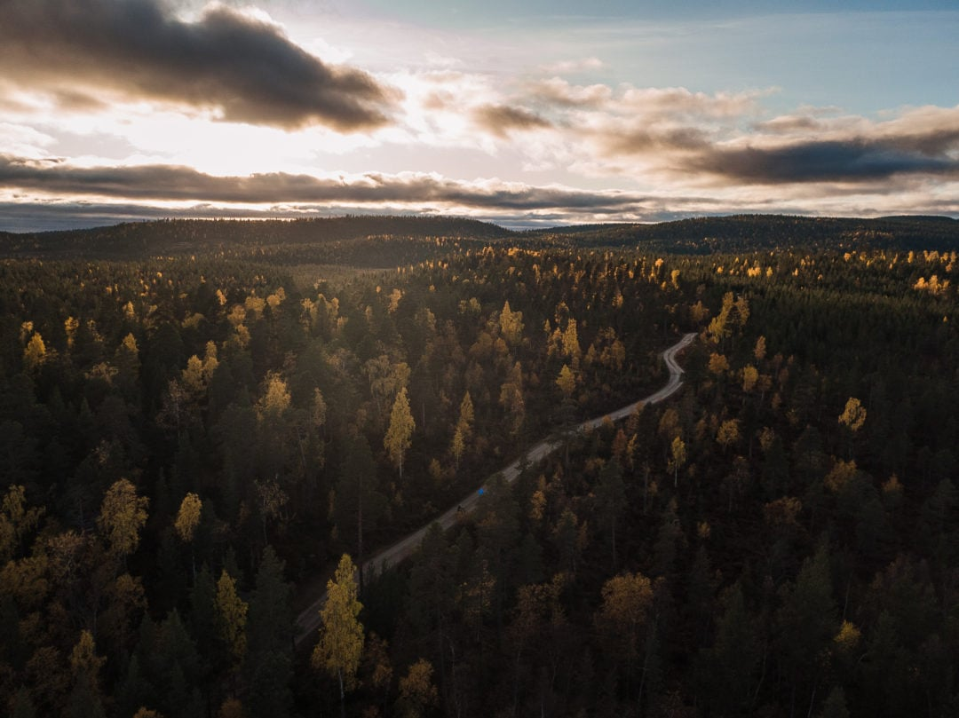 Fatbiking guided tour in autumn with Aurora Village Ivalo Lapland Finland.