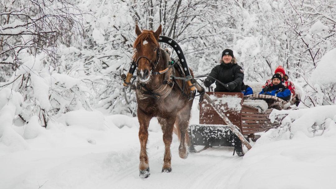 Horse riding at Aurora Village Ivalo Lapland Finland.